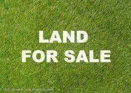 Land for Sale at 441 Grace Hill Road Monroe, New Jersey 08831 United States